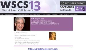 WSCS_2013_Angie Cleone_speaker